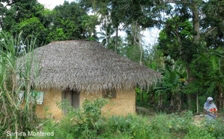 مامبو آفریقا