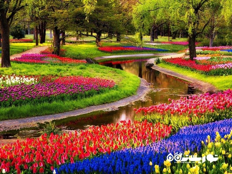 باغ های کوکِنهوف (Keukenhof Gardens)