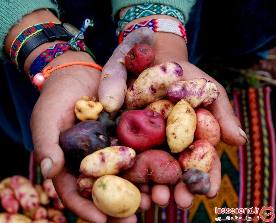 پرو، یکی از بهترین پایتخت های خورد و خوراک دنیا