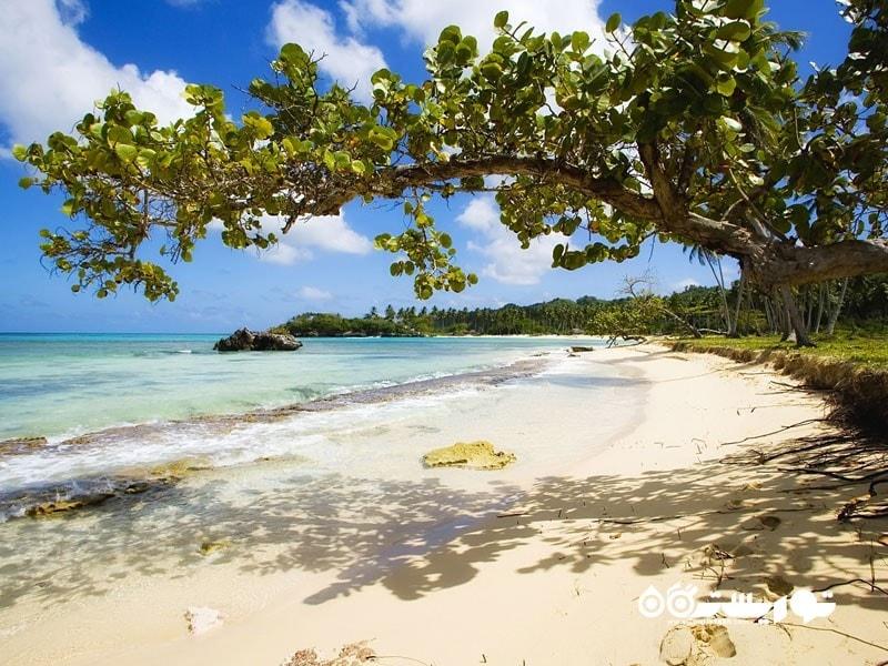 جزیره پلایا ریکون (Playa Rincon) در جمهوری دومینیکن