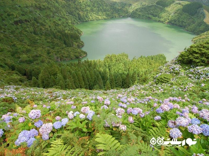 جزیره فلورِس (Flores) واقع در غربی ترین نقطه از مجمع الجزایر آزور