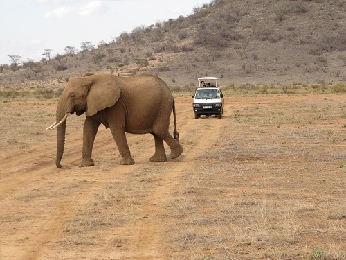 IMG 4207 - سفر به آفریقا - کنیا - قسمت دوم