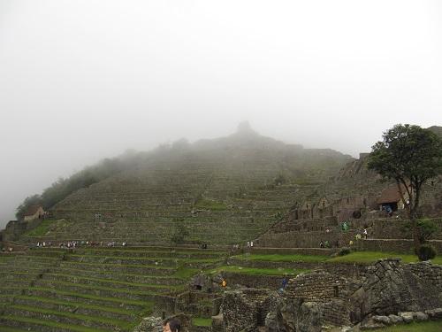 IMG 7667 1 - سفر به آمریکای جنوبی - پرو - ماچو پیچو (Machu Picchu)