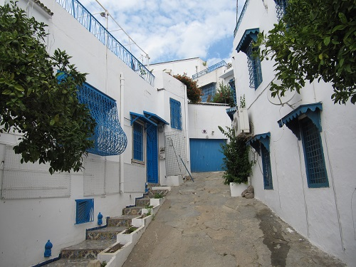IMG 8413 - سفر به تونس - حومه تونس - قسمت دوم: سیدی بو سعید