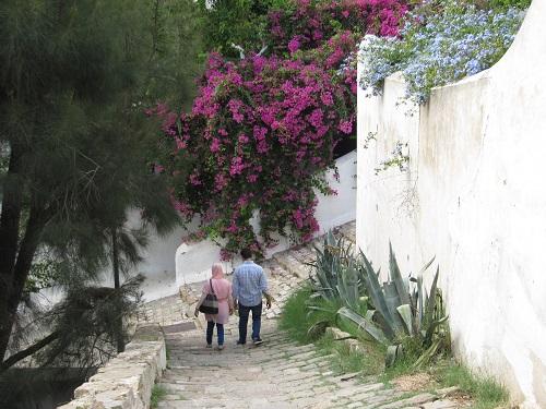IMG 8424 - سفر به تونس - حومه تونس - قسمت دوم: سیدی بو سعید