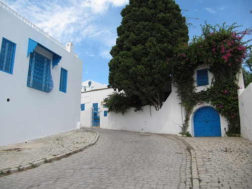 IMG 8436 - سفر به تونس - مقدمات سفر