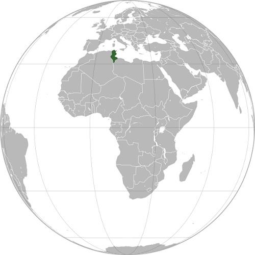 wikipedia - سفر به تونس - مقدمات سفر
