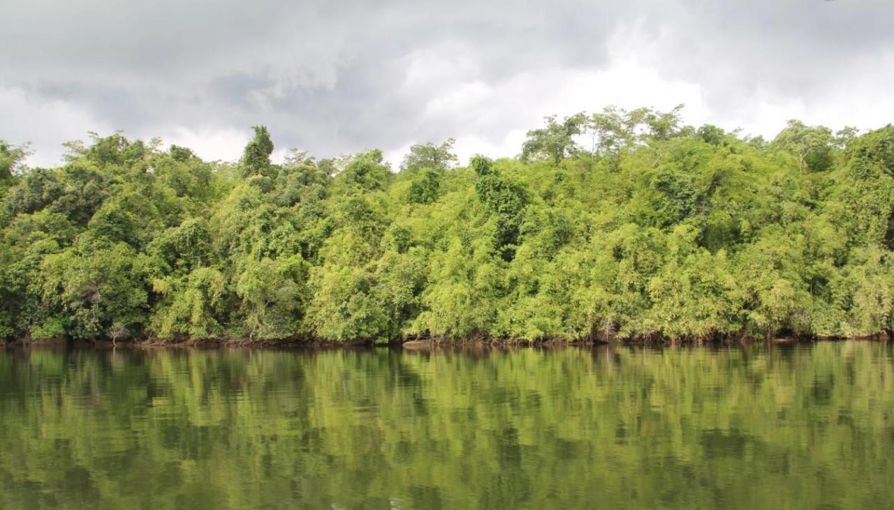 جزیره کوکونگ