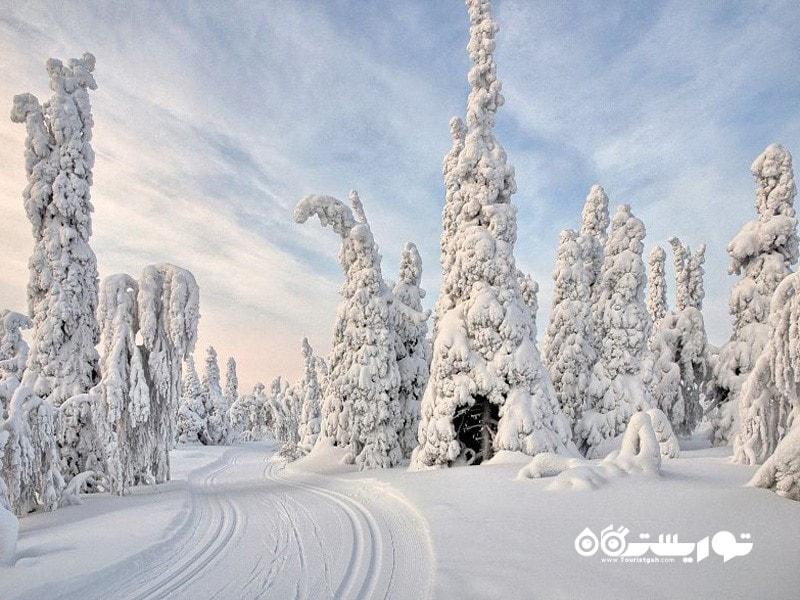 سرزمین عجایب زمستان