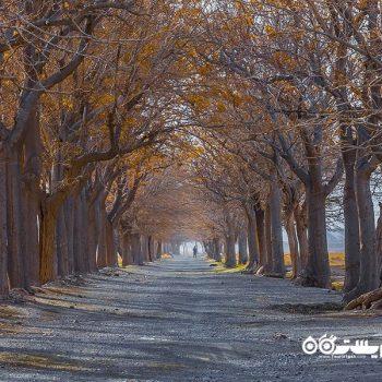 شهرستان شوکت آباد، بیرجند، استان خراسان جنوبی