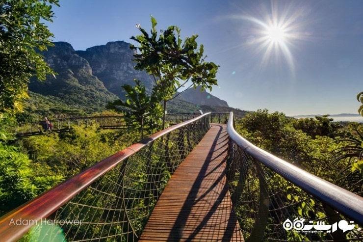 عکس هایی زیبا از بلومزلَنگ در  آفریقای جنوبی