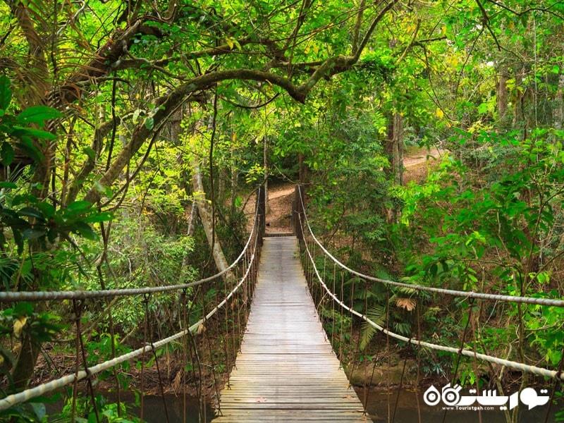 پارک ملی کائو یای در تایلند
