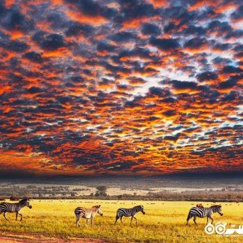 10 شگفتی باورنکردنی طبیعی در آفریقا