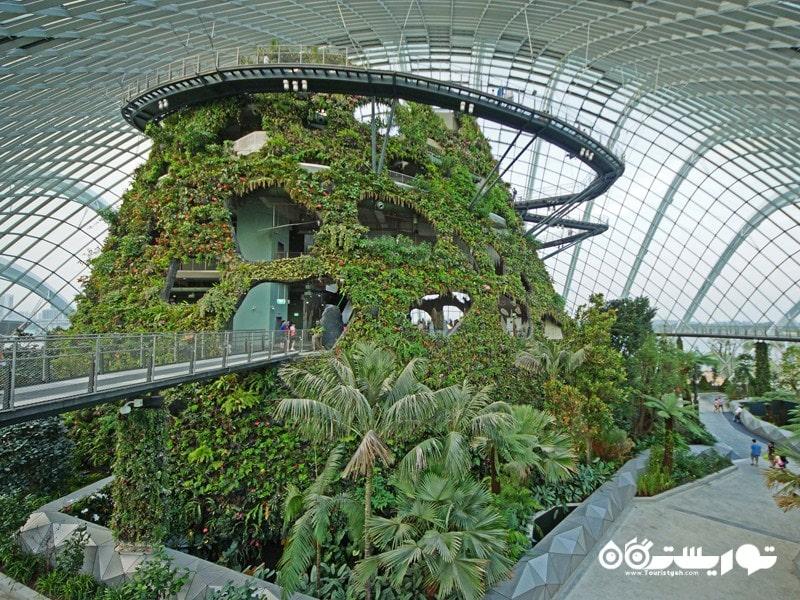 باغهای طبیعت زیبا در شهر سنگاپور