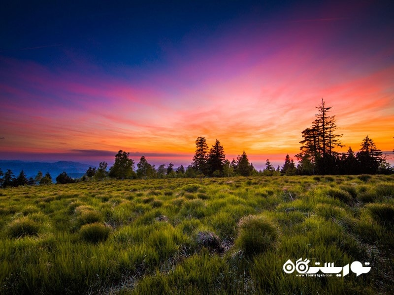 2- پارک ملی بَلِک فارِست (جنگل سیاه) (The Black Forest National Park)، آلمان