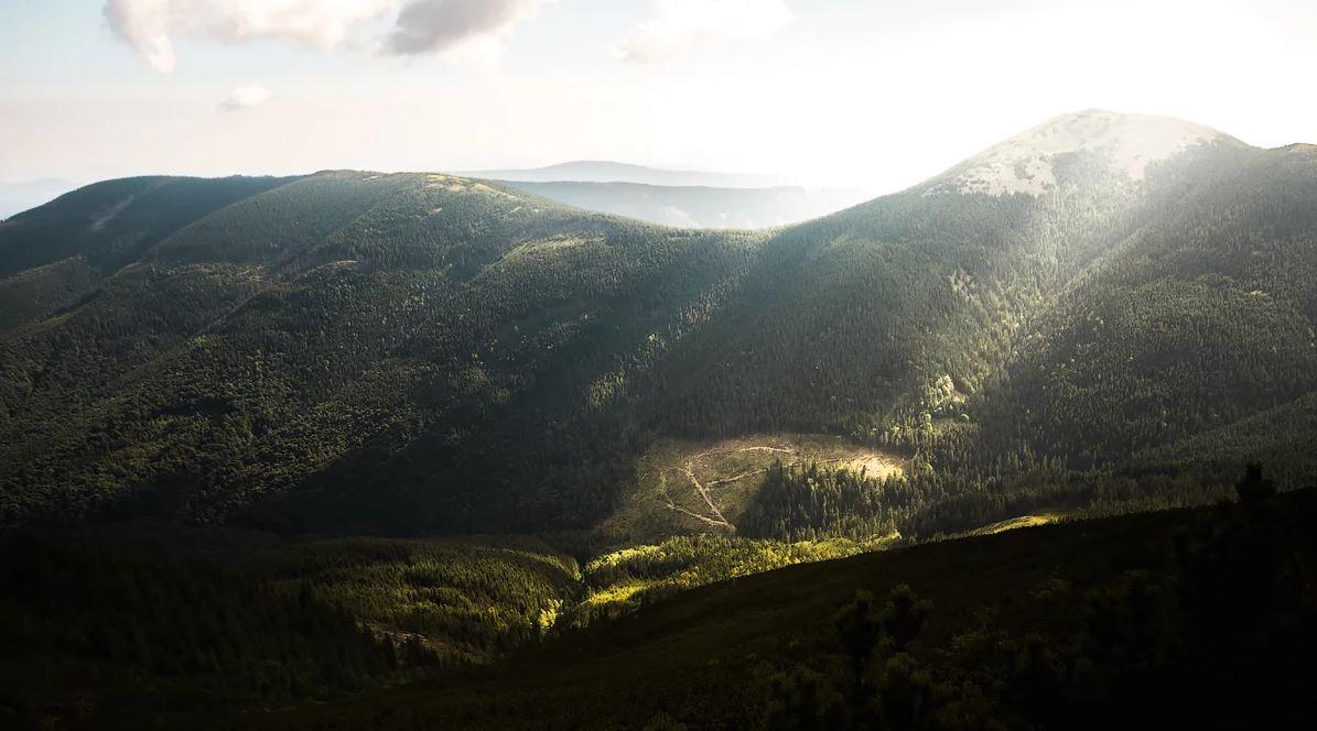پارک ملی کارپاتیان