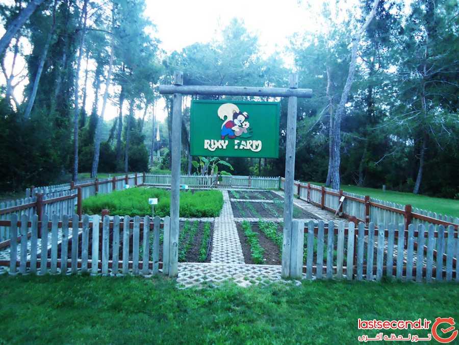 باغچه کشاورزی