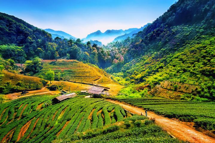 Thailand top destinations 3