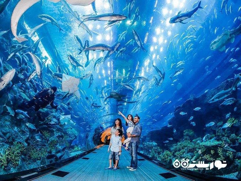 4-آکواریوم دبیDubai Aquarium
