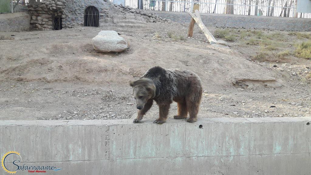 باغ وحش ارم تهران