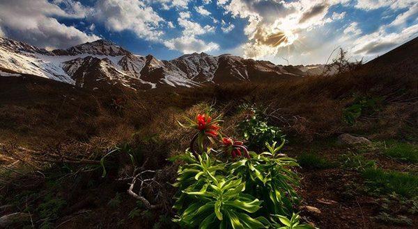 گلستان-کوه